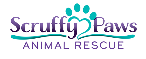 Scruffy Paws Animal Rescue